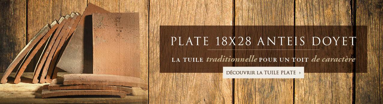 Tuile plate 18X28 Anteis Doyet