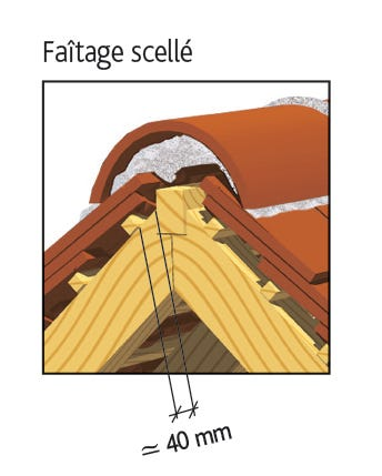 Tuile PLATE 17X27 Doyet d'EDILIANS : Faîtage scellé
