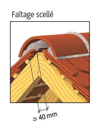 Tuile PLATE ECAILLE PRESSEE 17x27 Ste Foy d'EDILIANS : Faîtage scellé