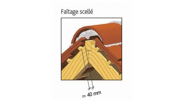 Tuile PLATE TRADITION 17x27 Doyet d'EDILIANS : Faîtage scellé